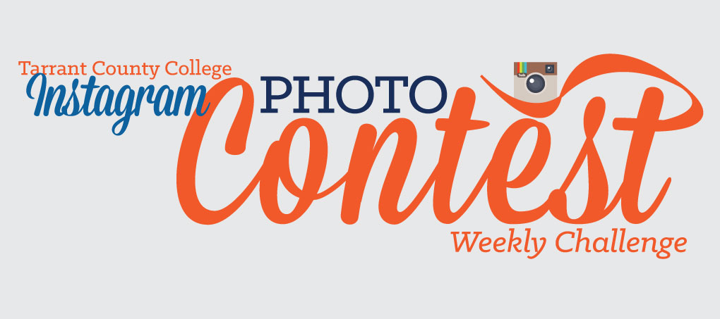 Instagram contest logo