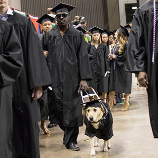 Quentin Johnson is graduation regalia, walking with his dog